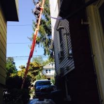 Clean Gutter Service - Job Photo